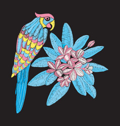pattern with parrot and flower plumeria embroidery vector image