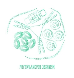 plankton phytoplankton outline vector image