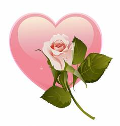 simple rose and heart vector image vector image