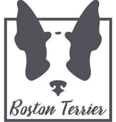 Boston Terrier Silhouette Logo Concept vector image