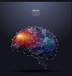 Brain low poly color vector