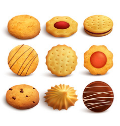 cookies realistic set vector image