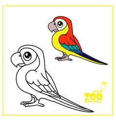 cute cartoon ara parrot color and outlined on a vector image