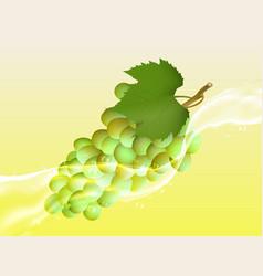 Delicious juicy grape in spray of juice vector