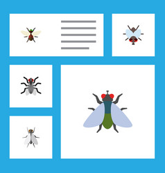 Flat icon fly set of gnat bluebottle buzz and vector