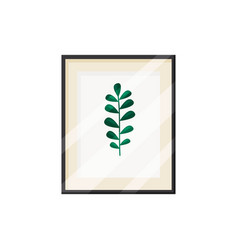 Green leaf in frame picture and herbarium concept vector