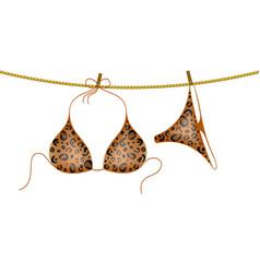 Leopard bikini suit hanging on rope vector