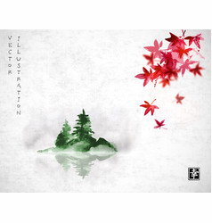 red japanese maple leaves and island with green vector image