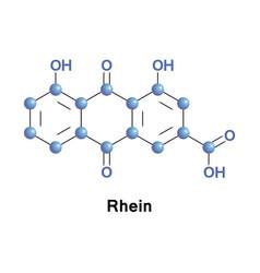 rhein cassic acid vector image