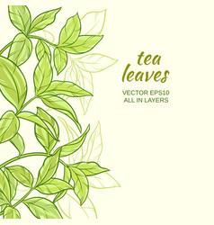 Tea leaves background vector