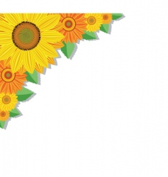 sunflowers and leaves vector image vector image