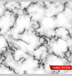 white marble stone texture vector image