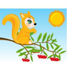 Animal squirrel on branch rowanberry vector