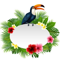 cartoon funny toucan with blank sign on plant back vector image