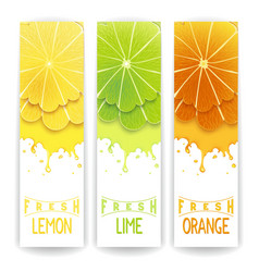 Citrus fresh juice vector image