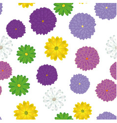 multicolor spring meadow flowers seamless white vector image