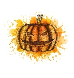 Pumpkin Sketch vector