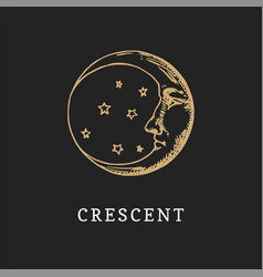 the crescent hand drawn in engraving style vector image