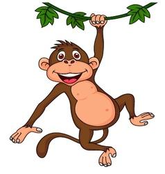 Cute monkey hanging vector