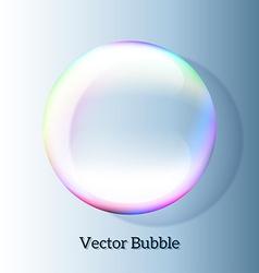 Transparent soap bubble vector image