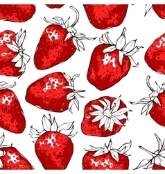 Seamless pattern with red strawberries vector image