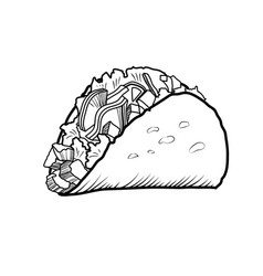sketch hand drawn of taco vector image