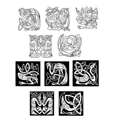 Stork and heron birds in celtic patterns vector image vector image