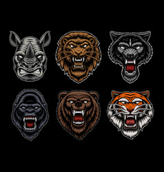 A set different animal mascots vector