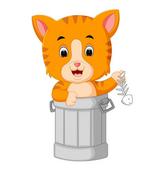 cat in trash cartoon vector image