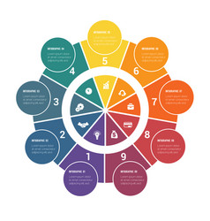 colorful circular infographics from ring and vector image