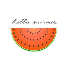Half slice of watermelon flat icon of summer vector