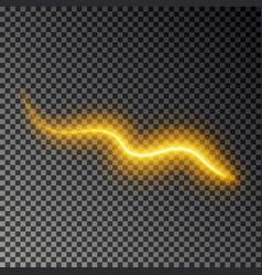 light line effect gold glowing light fire vector image