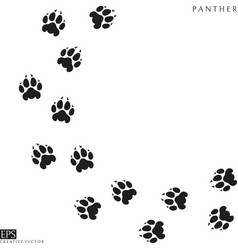 panther paw prints silhouette vector image