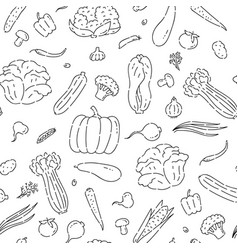 Pattern seamless vegetables line doodle varieties vector
