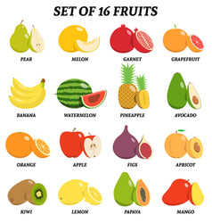 set of fruits with signatures vector image