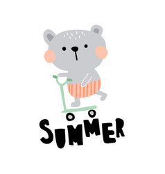 Summer bear vector