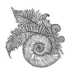 Prehistoric graphic seashell and fern branches vector