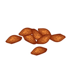 A Stack of Almonds on White Background vector image
