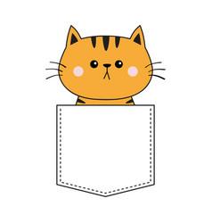 cute orange cat sitting in pocket pink cheeks vector image