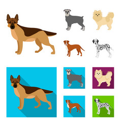 Dog breeds cartoonflat icons in set collection vector
