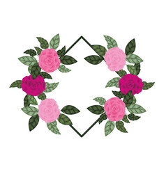frame with rose isolated icon vector image