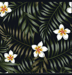 night background tropical leaves and flowers vector image