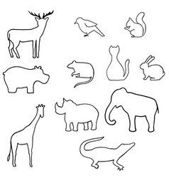 Outline wild animal vector