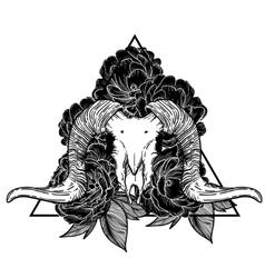 Ram skull occult symbol goat vector