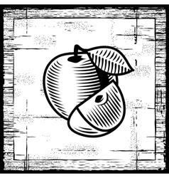 Retro apple black and white vector image vector image