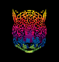 cheetah face tiger head front view face vector image