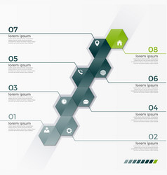 infographic template with 8 hexagons vector image