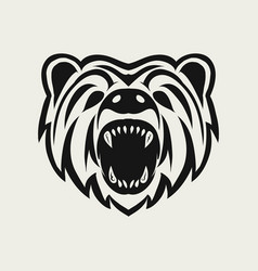 bear logo design icon vector image