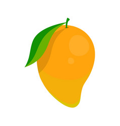 picture of mango vector image