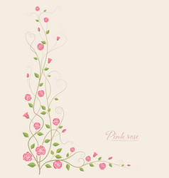 pink rose flower vector image